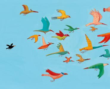 oiseaux_home
