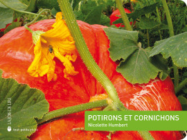 Potirons et cornichons