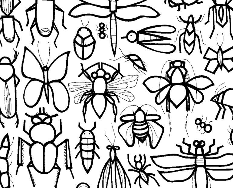 1001 choses à colorier