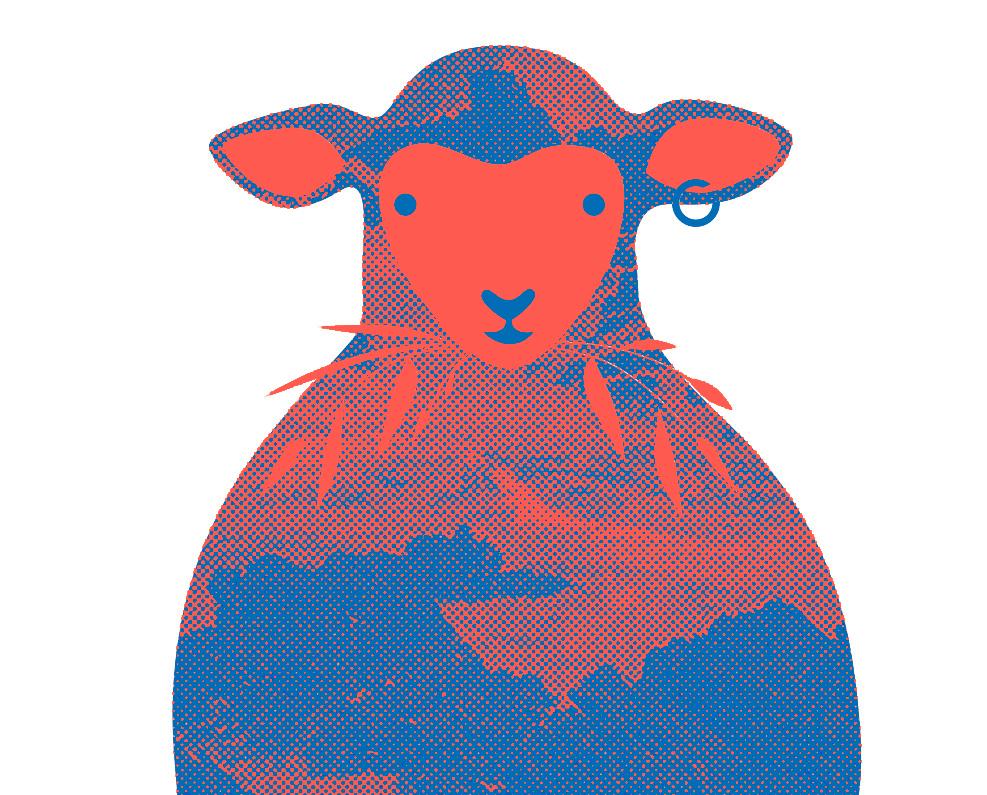 L'incroyable histoire du mouton qui sauva une école