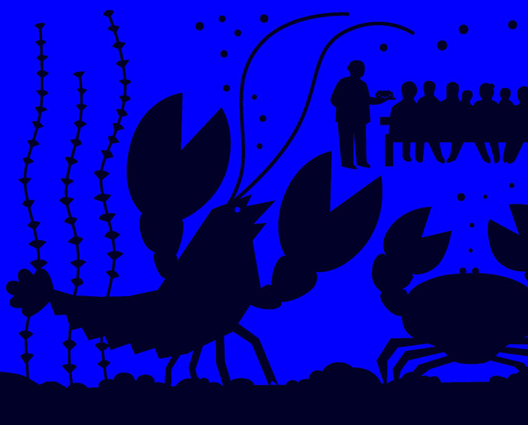 L'incroyable histoire du homard qui sauva sa carapace